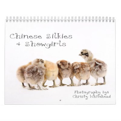 Chinese Silkie & Showgirl Calendar