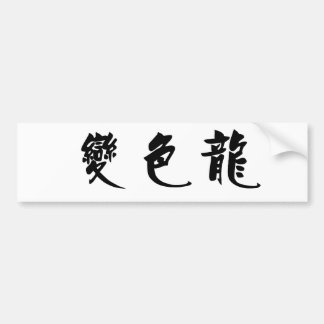 Chinese Symbol for anole, chameleon Car Bumper Sticker