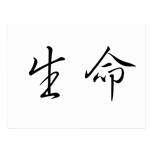 chinese symbol for life postcard zazzle