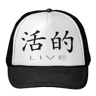 Chinese Symbol for Live Mesh Hat
