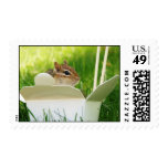 Chinese Takeout Cute Chipmunk Postage