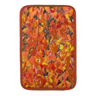 Chinese Tallow Tree in Autumn MacBook sleeve