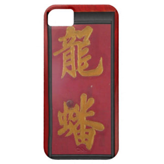 Chinese temple doors, Singapore iPhone 5 Covers