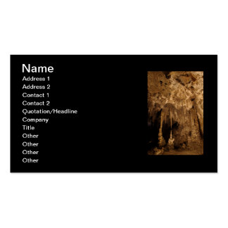Chinese Theater Double-Sided Standard Business Cards (Pack Of 100)