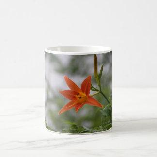 Chinese Tiger Lily Bud & Bloom Flower Classic White Coffee Mug