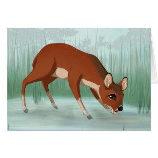 Chinese water deer card