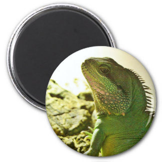 Chinese Water Dragon 2 Inch Round Magnet