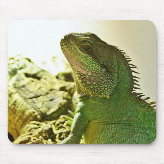 Chinese Water Dragon Mouse Pad