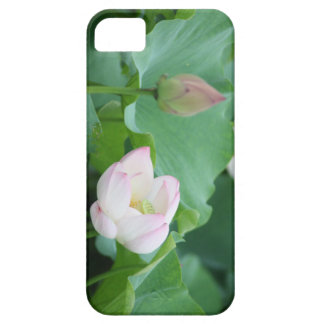 Chinese Water Lily Bud & Bloom Flowers iPhone SE/5/5s Case