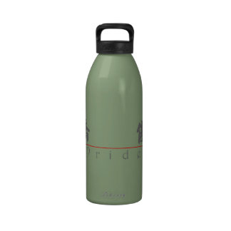 Chinese word for Pride 10204_4.pdf Drinking Bottles