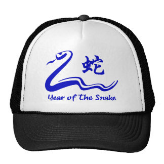 Chinese Year of The Water Snake 1953 2013 Mesh Hat