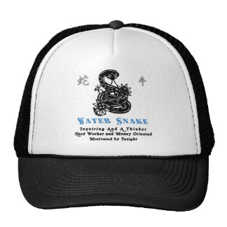 Chinese Year of The Water Snake 1953 2013 Mesh Hats