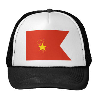 Chinese Young Pioneers Pennants, China Hat
