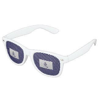 Chinese zodiac sign Rabbit blue Retro Sunglasses