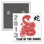 Chinese Zodiac Snake 2013 Pins