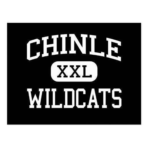 Chinle - Wildcats - High School - Chinle Arizona Post Card