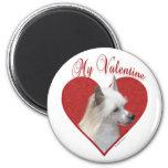 Chino Crested a mi tarjeta del día de San Valentín Imanes