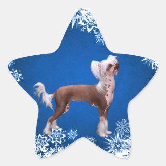 Chino Crested Pegatina En Forma De Estrella