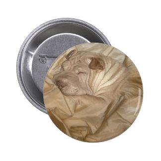 Chino Shar Pei camuflado en arrugas Pins