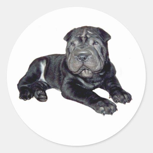 Chino Shar Pei - perrito negro Etiqueta Redonda