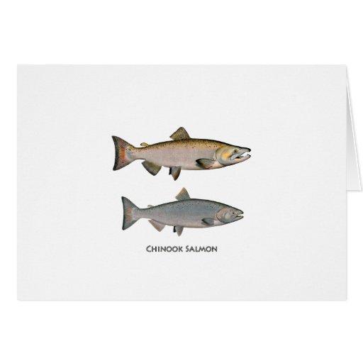 Chinook - King Salmon Greeting Card