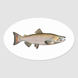 Chinook - King Salmon (spawning phase) Oval Sticker