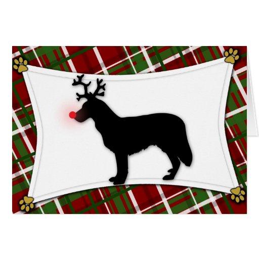 Chinook Reindeer Christmas Card