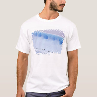 Chinstrap Penguin, South Orkney Islands T-Shirt