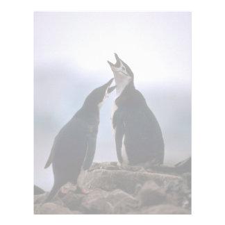 Chinstrap Penguins Greeting At Nest Letterhead