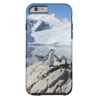 Chinstrap Penguins in Antarctica Tough iPhone 6 Case