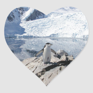 Chinstrap Penguins in Antarctica Heart Sticker