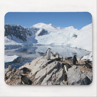 Chinstrap Penguins in Antarctica Mouse Pad