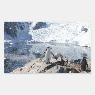 Chinstrap Penguins in Antarctica Rectangular Sticker
