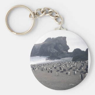 Chinstrap Penguins on Seal Island Basic Round Button Keychain