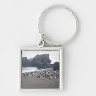 Chinstrap Penguins on Seal Island Silver-Colored Square Keychain