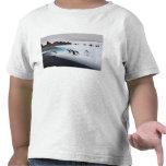 chinstrap penguins, Pygoscelis antarctica, 2 T Shirts