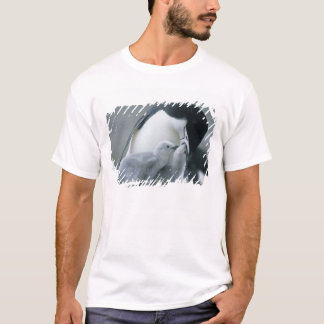 Chinstrap Penguins, Pygoscelis antarctica), T-Shirt