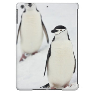 Chinstrap Penguins Pygoscelis antarcticus), Case For iPad Air