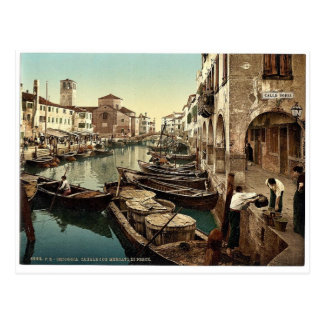 Chioggia, fish market, Venice, Italy vintage Photo Postcard
