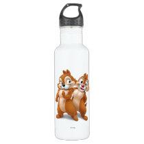 Chip 'n' Dale Disney Stainless Steel Water Bottle