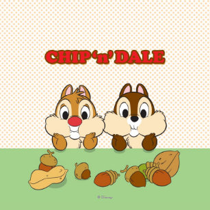 chip and dale t shirts chip and dale gifts art posters more