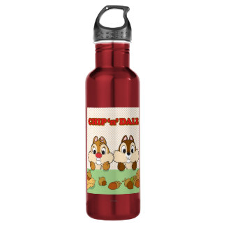 Chip 'n' Dale Stainless Steel Water Bottle