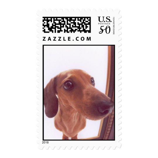 Chip Nose Postage