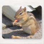 chipie alfombrillas de raton