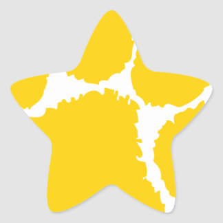 chipley pee wee football star sticker