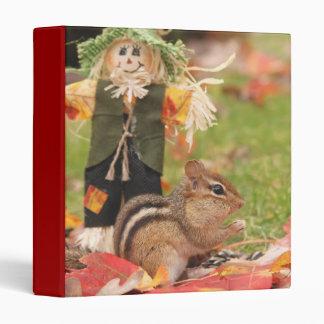 Chipmunk 1 de la diversión del otoño álbum de fot