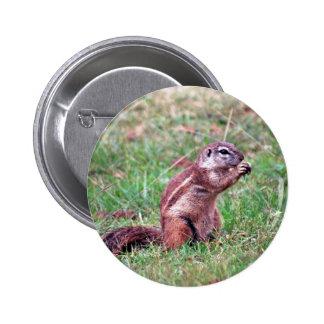 Chipmunk 2 Inch Round Button