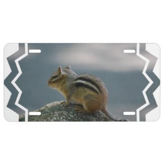 chipmunk-2.jpg license plate