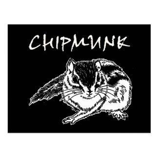 chipmunk 2 (rough sketch) postcard