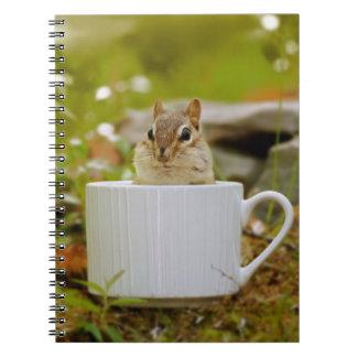 Chipmunk adorable en una taza libros de apuntes